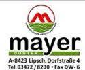 Mayer lipsch